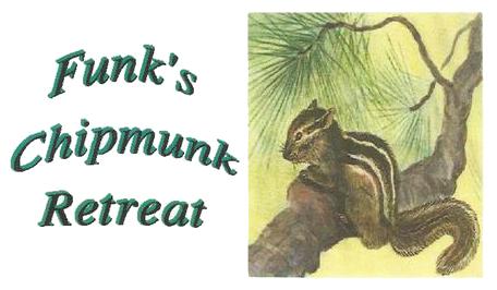 Cabin Rentals Northern WI - Funk's Chipmunk Retreat